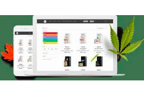 Things to Consider When Buying CBD From Online Stores like Daily Marijuana