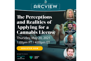 The Perceptions & Realities of Applying For A Cannabis License