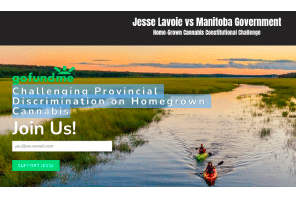 Canada: Toba Grown: Jesse Lavoie vs Manitoba Government Home-Grown Cannabis Constitutional Challenge