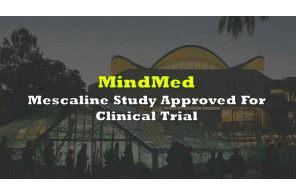 MindMed's Mescaline Study Approved For Clinical Trial