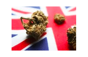 Article: European Pharmaceutical Review: Ten recommendations to foster the UK's medicinal cannabis market