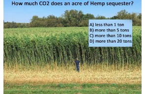 How Much CO2 Does An Acre Of Hemp Sequester?
