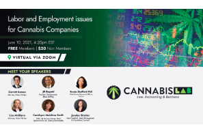 New Era of Cannabis M&A: What You Need to Know