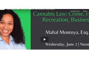 UI Center for Human Rights – Cannabis Law: Crime, Health, Recreation, Business?