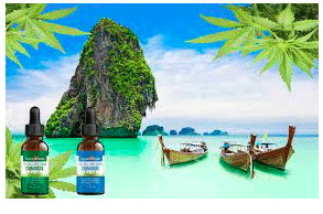 Baker & McKenzie: Thailand: Regulations on the Use of Cannabis and Hemp in Cosmetics