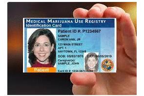 Florida medical marijuana operators in 'catbird seat' after state court decision