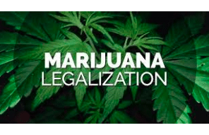 The Highs and Lows of Marijuana Legalization