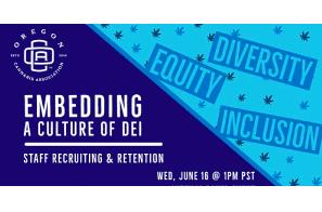 Embedding A Culture of DEI