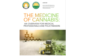 New Publication: NCIA's Policy Council – The Medicine of Cannabis: An Overview for Medical Professionals and Policymakers