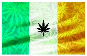 CBD vs THC – The Legal Status of Cannabis in Dublin Today