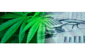 This Accounting Change Could Drastically Impact Cannabis Companies' Profitability