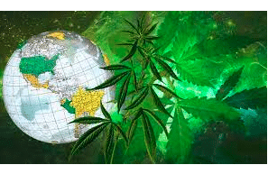 Fresh Toast Article: Updated Guide To Cannabis Laws Around The World