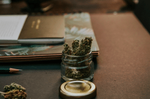 Here's What You Need For A Successful Cannabis Company