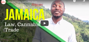 Jamaica - Law, Cannabis, Trade