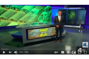 Illegal Weed Grows Wreak Havoc in the High Desert   NBCLA