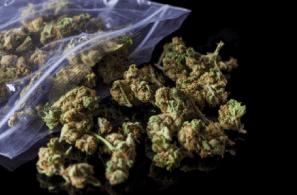 Top 5 Tips for Marijuana Packaging