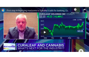 Of Course He'd Say.......  First step in legalizing marijuana is to make it safe for banking, Curaleaf CEO says