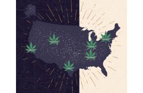 Hemp Grower Article: Smokable Hemp Laws All Over the Map