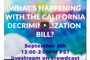 Senator Scott Wiener on Chacruna Community Forum re California Senate Bill 519 (SB519)