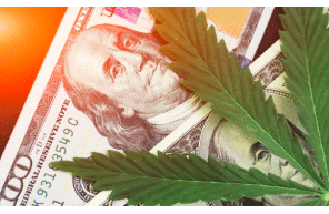 Cannabis Banking Insights: Understanding the Evolution and Preparing for the Future Join Us on Wednesday, September 29, 2021