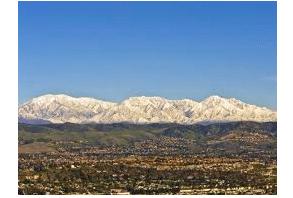 San  Bernardino: Operation Hammer Strike nets 21,002 pot plants in its second week