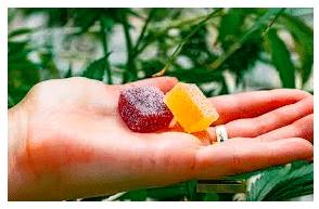 Gummy Remedies: CBD Gummies & Their Uses