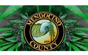 """Mendocino County Code Enforcement Division Department """"Abates Multiple Sites With Between 4-85 Cannabis Plants"""""""