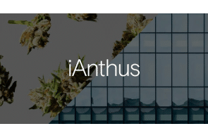 iAnthus Provides Update on Court Application