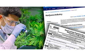 """IRS Launches Program: """"Providing Resources to Help Cannabis Business Owners Successfully Navigate Unique Tax Responsibilities"""""""