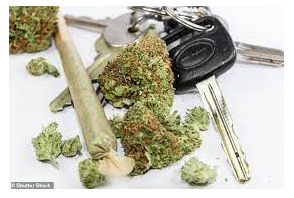 Cannabis Law: What You Need To Know?