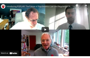 Rick Doblin: Introducing POPLAR: The Future of Psychedelics Law and Regulation   Rick Doblin keynote
