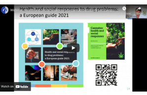 Webinar: Health and social responses to cannabis problems in Europe — time for a paradigm shift?
