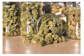 Surprising benefits of consuming weed