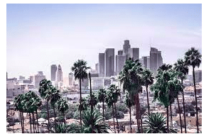 Cannabis Attorney Prime Headhunting & Recruiting, Inc. Los Angeles, CA Remote