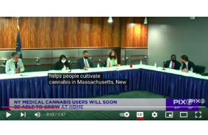 New Report: NYers can soon grow medical marijuana at home